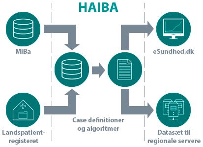 HAIBA - Formidling af data